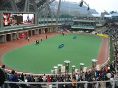 horserace111