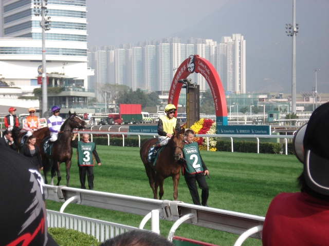 horserace14