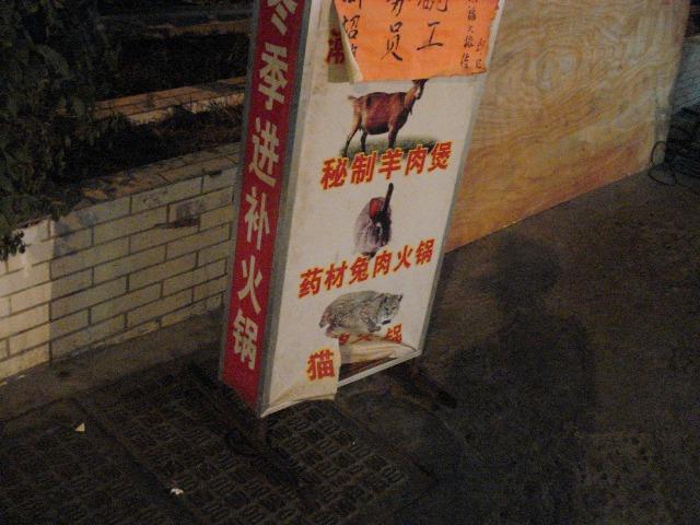 cat-nabe