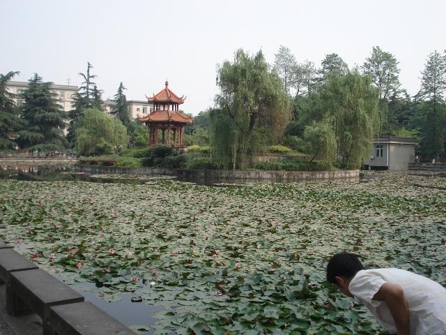 sichuan-university7