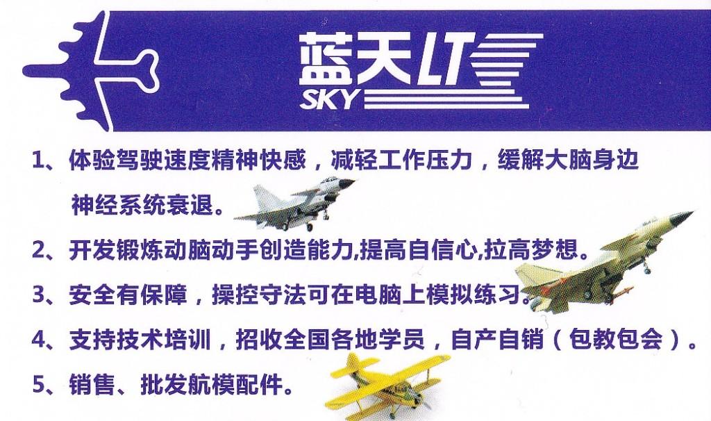 little-plane16