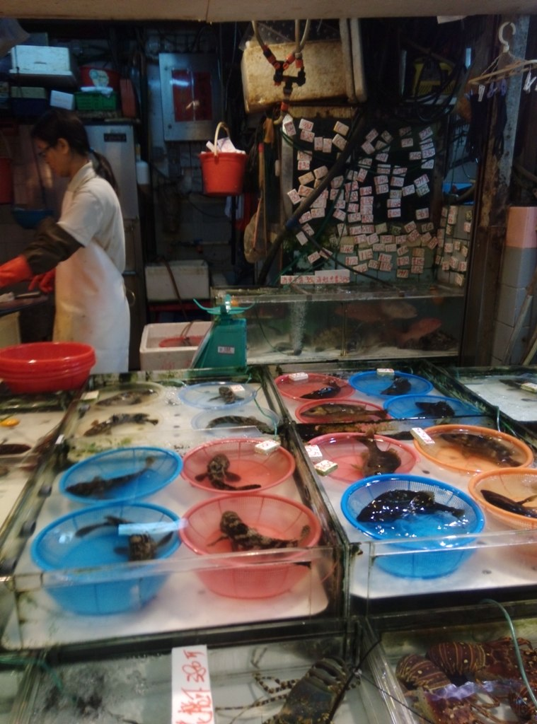 shangshui-market (31)