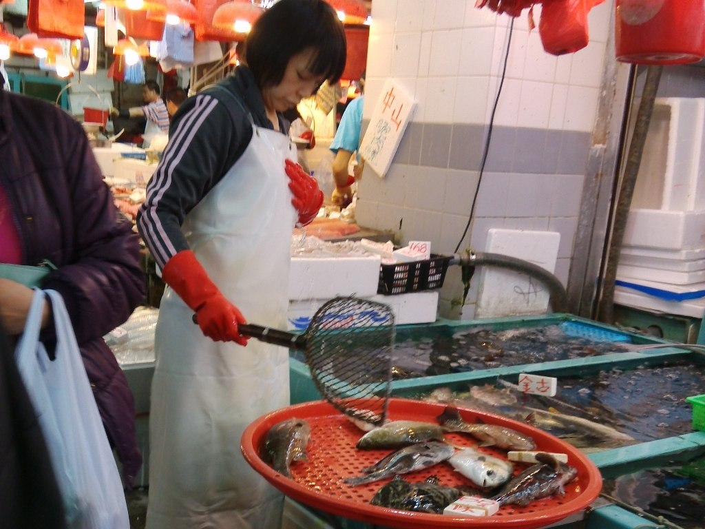shangshui-market (41)