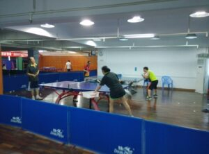 pingpong (4)