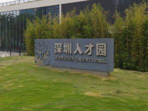 chinese-visa-8