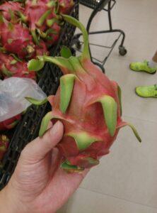 広東省南国フルーツの世界